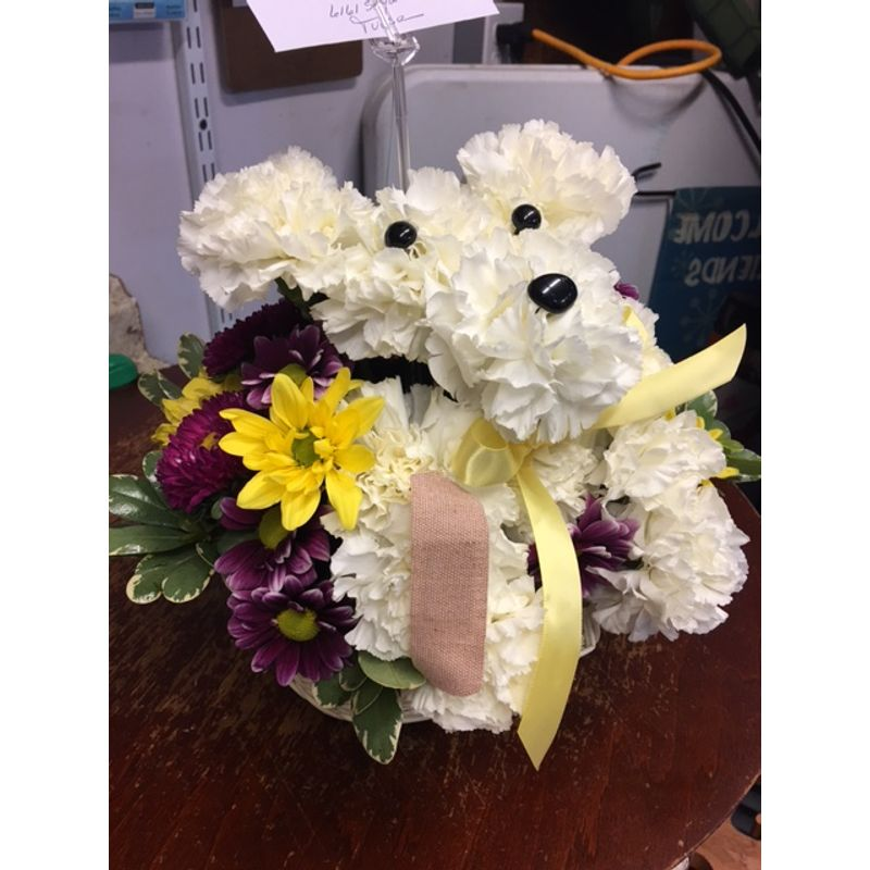 1800flowers Sick as a Dog Tulsa OK Florist - Absolutely Flowers and ...