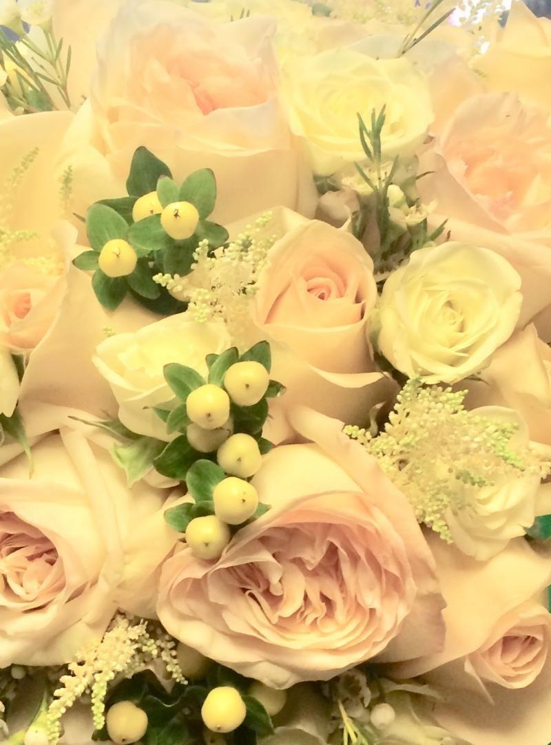 Albi florist local florist toronto on store logo store logo izmirmasajfo