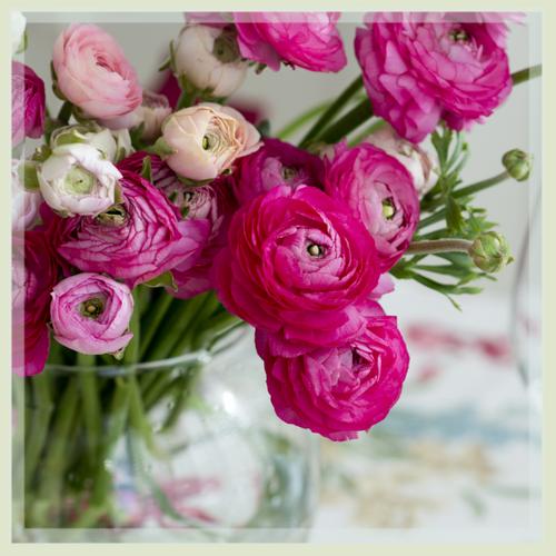Lee S Summit Florist All A Bloom Floral Design Flower Delivery