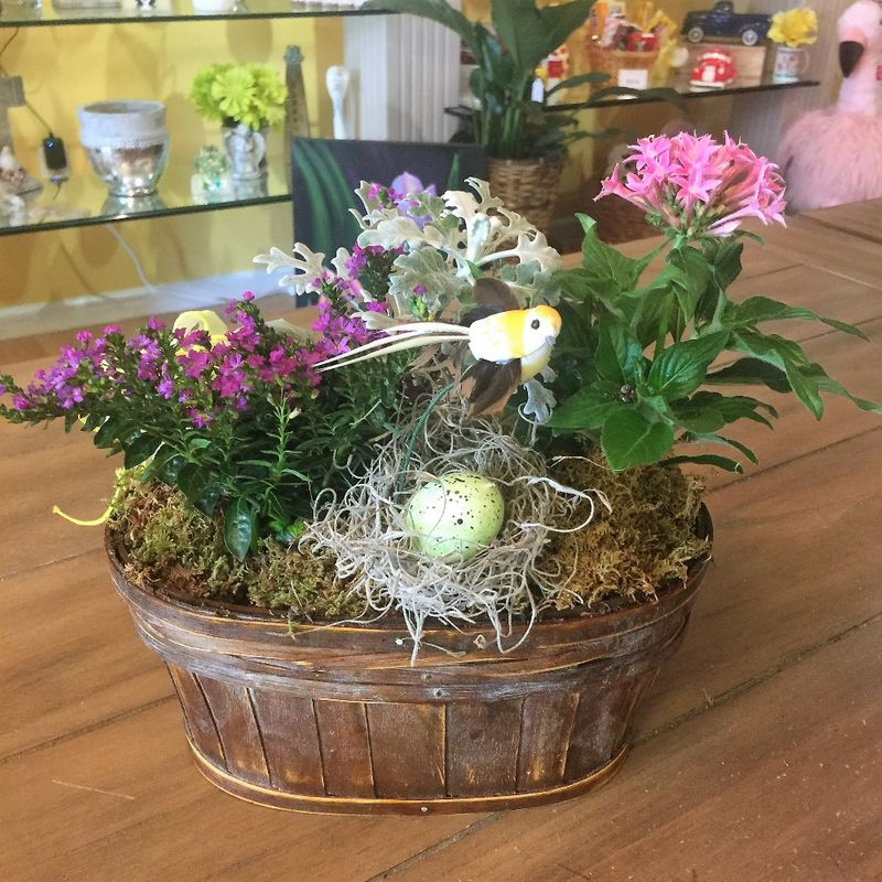 Spring Dish Garden With Nest Art Among The Flowers Palm Coast