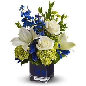 Serenade In Blue Palm Coast Fl Art Among The Flowers