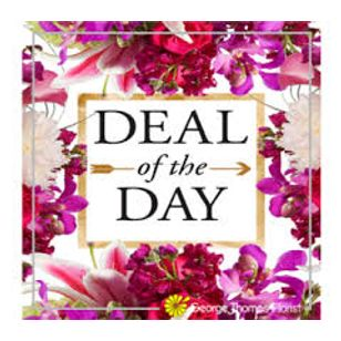 Deal Of The Day Art Among The Flowers Palm Coast Florist