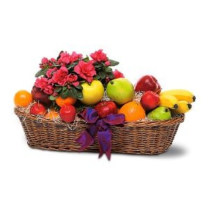 Fruit And Plant Basket In Palm Coast FL ART Among The FLOWERS