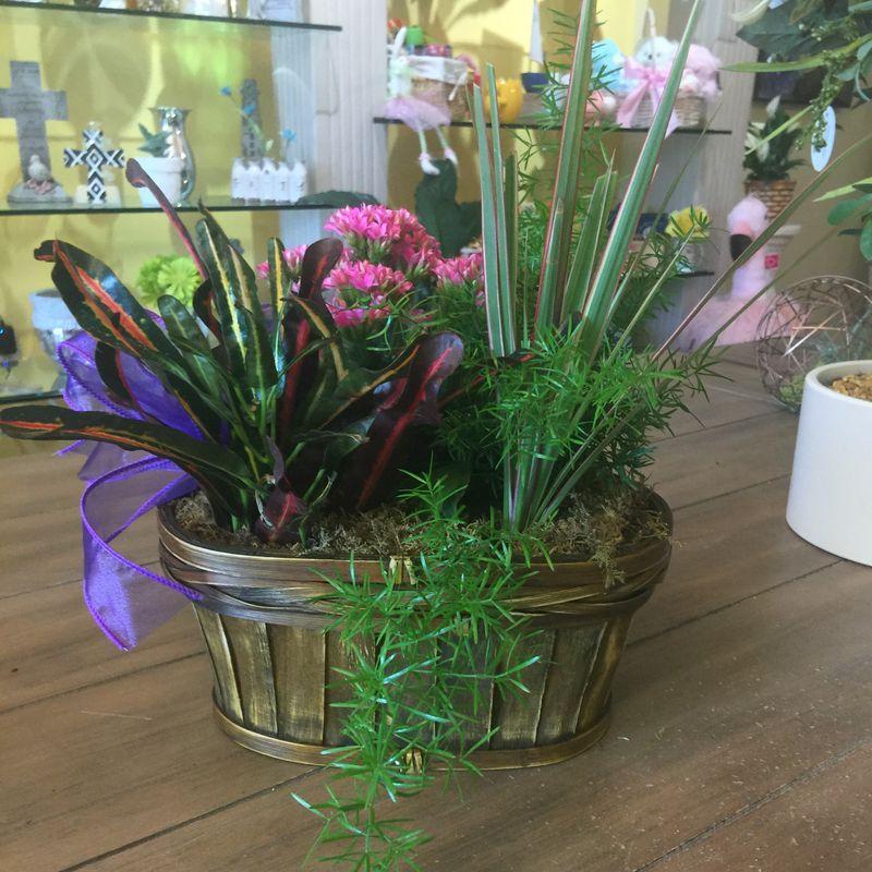 Spring dish garden art among the flowers palm coast florist free more views mightylinksfo