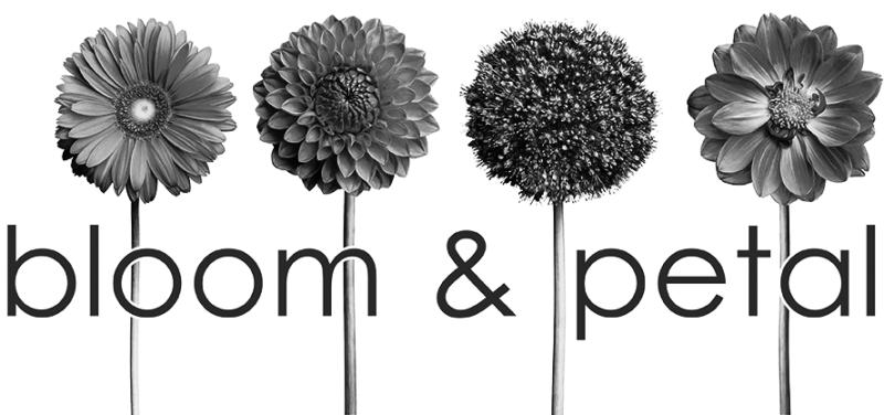 Bloom petal florist in birmingham al birmingham alabama florist store logo store logo mightylinksfo