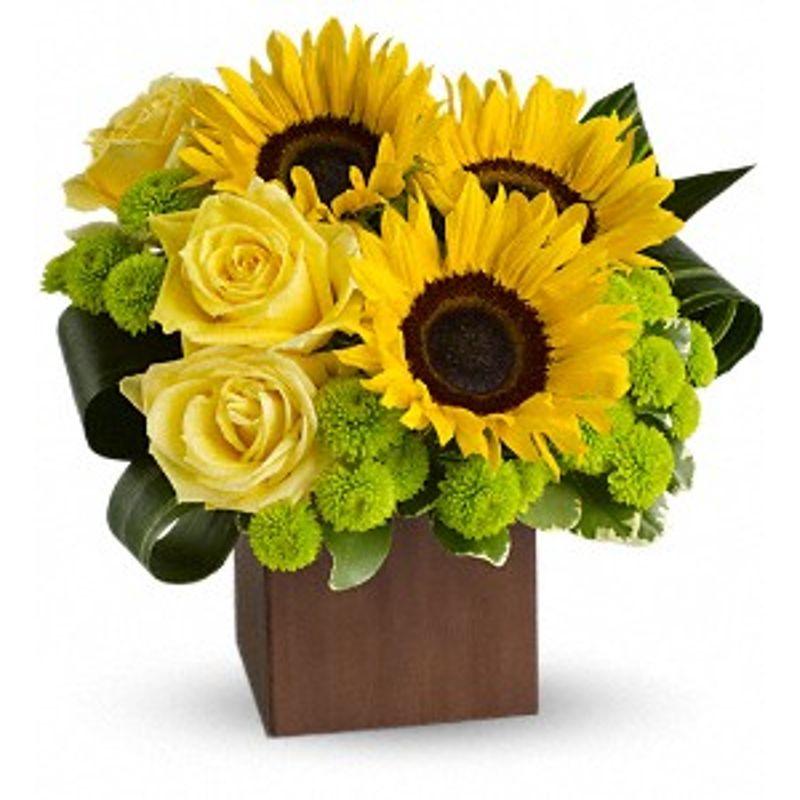 Sunflower Fantasy Bismarck, ND Florist
