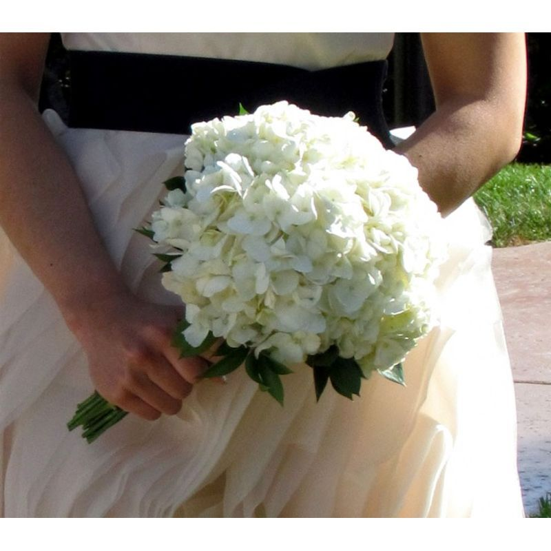 Hydrangea Wedding Package 4 Bloomin Basket Florist