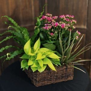 Northwestern Memorial Hospital Florist Chicago Florist Bunches A Flower Shop Local Flower Delivery Chicago Illinois 60614