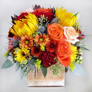 Holbrook ma florist voted best of the best in the south shore autumn leaves in stoughton ma central florist and nursery mightylinksfo