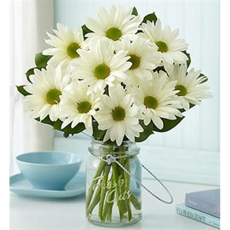 Mason Jar Daisies Design House of Flowers in Buford, GA delivering on design house hamilton, design house cameron, design house aurora,