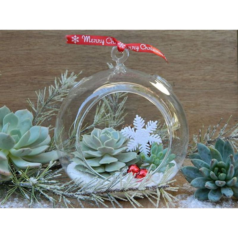 Christmas Succulent Centerpieces.Christmas Terrarium Design House Of Flowers In Buford Ga