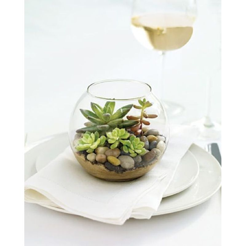 Mini Succulent Terrarium Chicago Florists Flowers Chicago Il