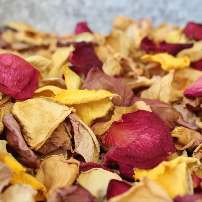 Dried Rose Petals Downtown Blooms - Galveston TX | Local Florist