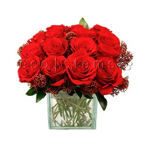 Roses Cubed in Toronto Ontario, eco|stems