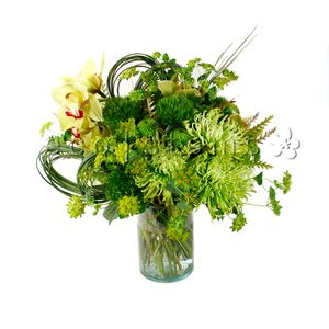 Green Seasonal Arrangement in Toronto Ontario, eco|stems