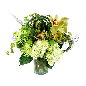 Green Seasonal Hand-tied Bouquet in Toronto Ontario, eco|stems
