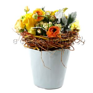 Nest Floral Art Arrangement in Toronto Ontario, eco|stems