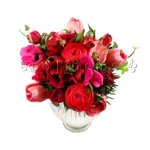Red and Pink Seasonal Hand-tied Bouquet in Toronto Ontario, eco|stems