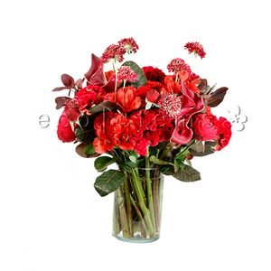 Red Seasonal Arrangement in Toronto Ontario, eco|stems