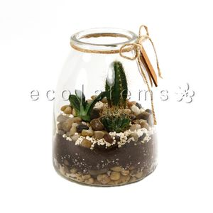 Rustic Jar Desert Terrariums  in Toronto Ontario, eco|stems