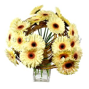 Spinning Gerbera Floral Art Arrangement in Toronto Ontario, eco|stems