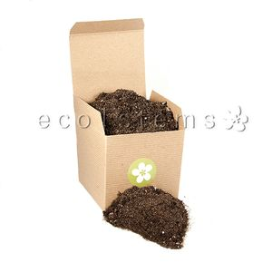Terrarium Supplies Eco Stems Toronto S Local Eco Friendly Florist