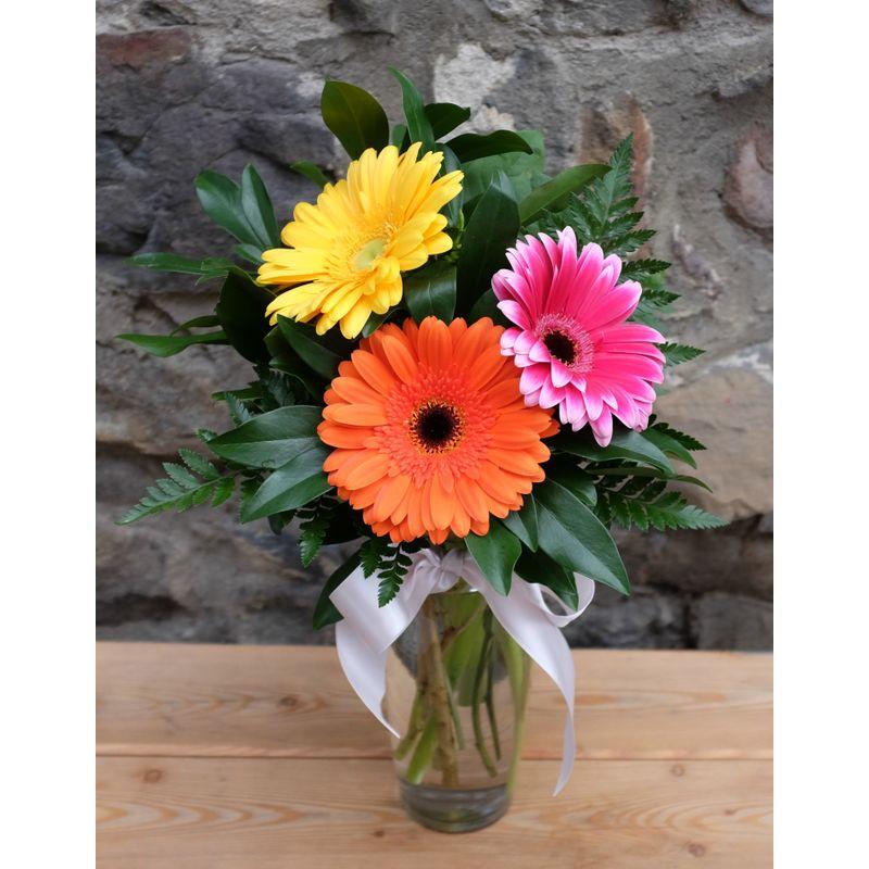 Three Gerbera Vase The Green Petal Fernie Bc Canada V0b 1m0