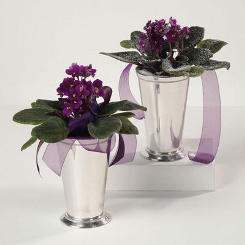 Violets In Silver Vase Floral Scents - Canton, MA 02021