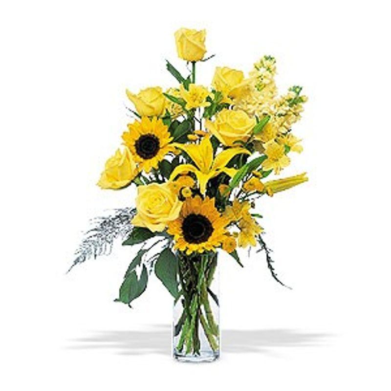 Blazing Sunshine Jacksonville Florida Florist Flowerama Jacksonville Fl