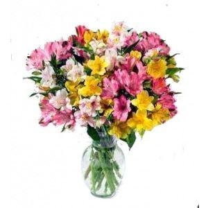 Gathered Alstroemeria's in Jacksonville Fl, Flower Express Inc