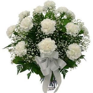 White carnations pure love good luck flower express usa local white carnations pure love good luck mightylinksfo