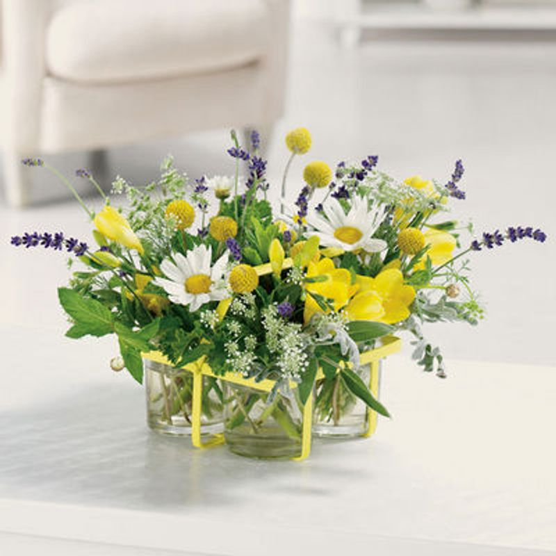 Herbs And Flowers Warren, MI 48092 Florist | Flowers and