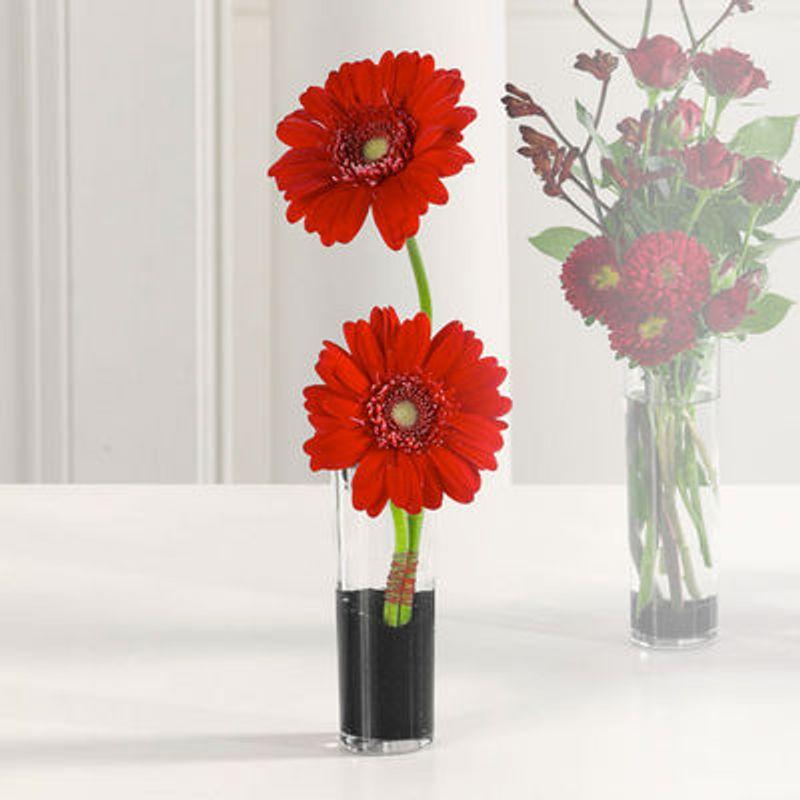 Gerberas In Bud Vase Flowers By Lowery