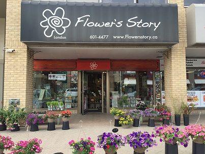 London Ontario Florists Flower S Story London Florists