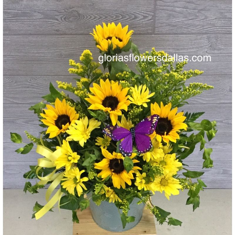 Sunflowers   SOLD OUT Gloria's Flowers-Dallas TX 75211