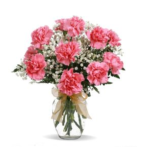Carnations spring florist spring texas florist in spring texas dozen carnations in spring tx spring texas florist golden mushroom florist flowers delivered mightylinksfo