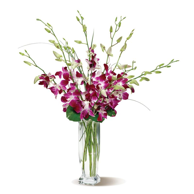 Orchids In A Vase Hemet Ca Florists City Florist And Gifts