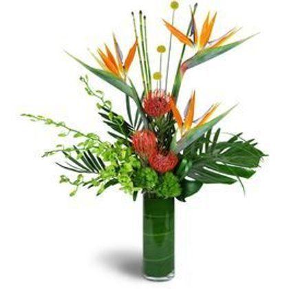 Tropical Array Oklahoma City Ok Florist Howard Brothers Florist