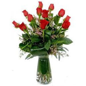 Fort lauderdale and palm beach premier orchid florist ideal the perfect dozen in fort lauderdale florida fort lauderdale premier orchid and flowers ideal mightylinksfo