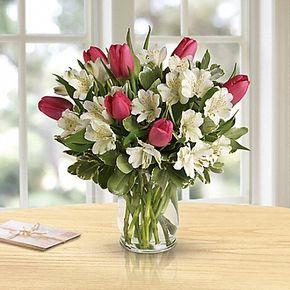 Spring Romance in Whitehorse Yukon Territory, In Bloom Flowers