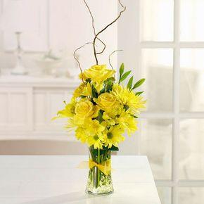 Sunshine Sparkle in Whitehorse Yukon Territory, In Bloom Flowers