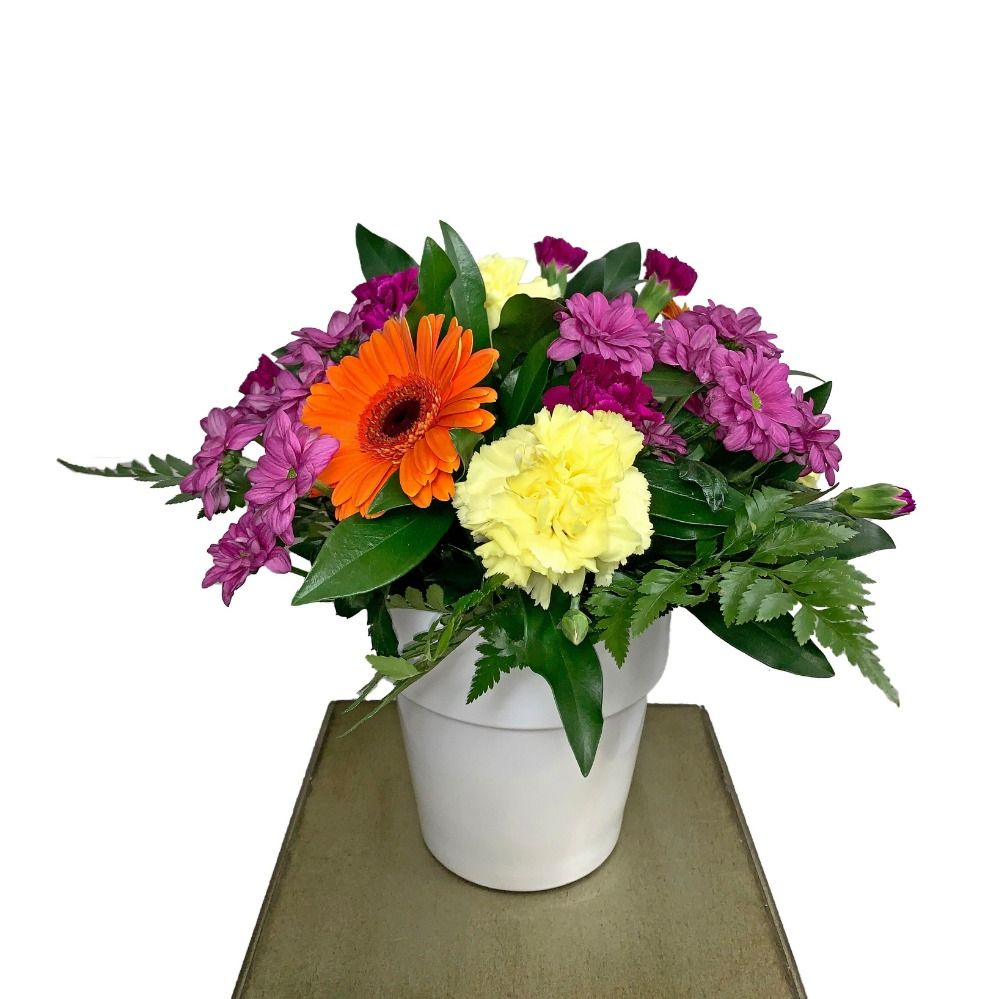 225 & Bright and Cheery Flower Pot Arrangement Kamloops Flower Delivery ...