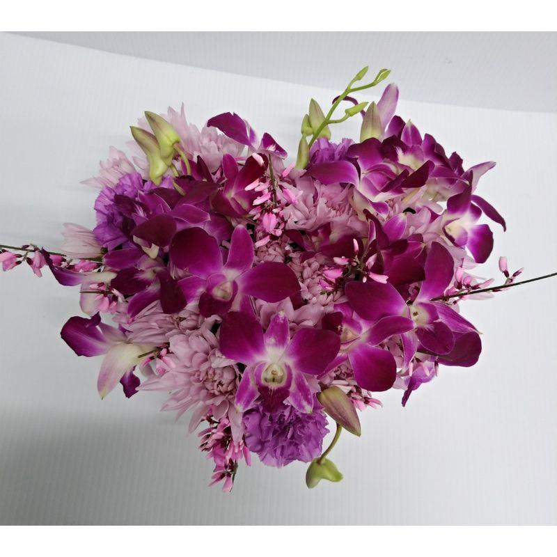 Orchid Love Kensington Florist Calgary Flower Shop Same Day Flower