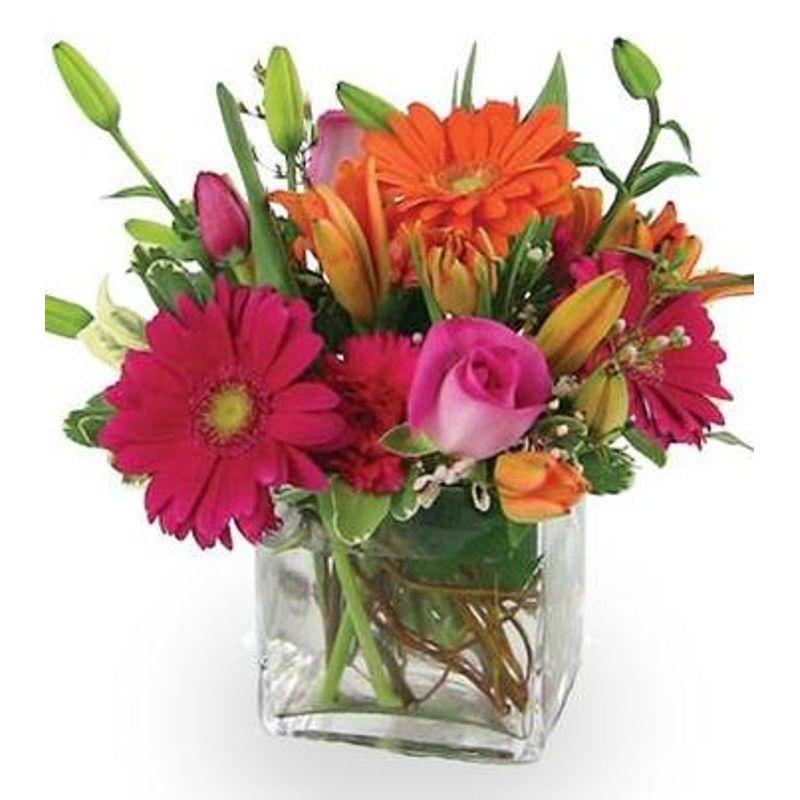 Daringly colorful lamee florist jacksonville fl