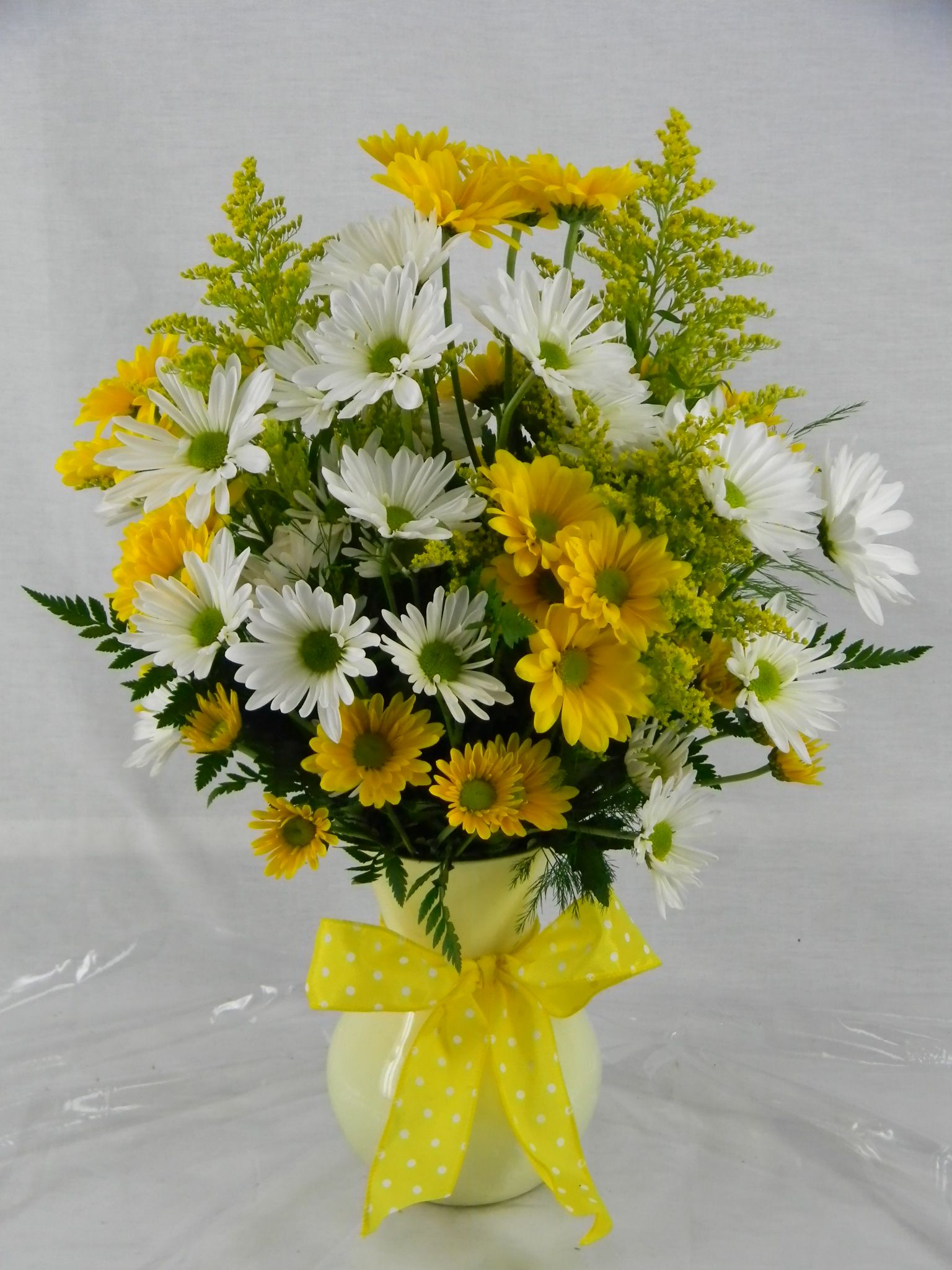 L 28 Crazy About Daisies Leith Flower Plant Gift Shop Plaistow