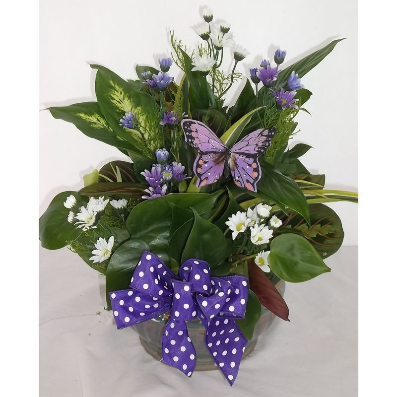 L 134 Dishgarden With Silk Flowers Added Leith Flower Plant Gift