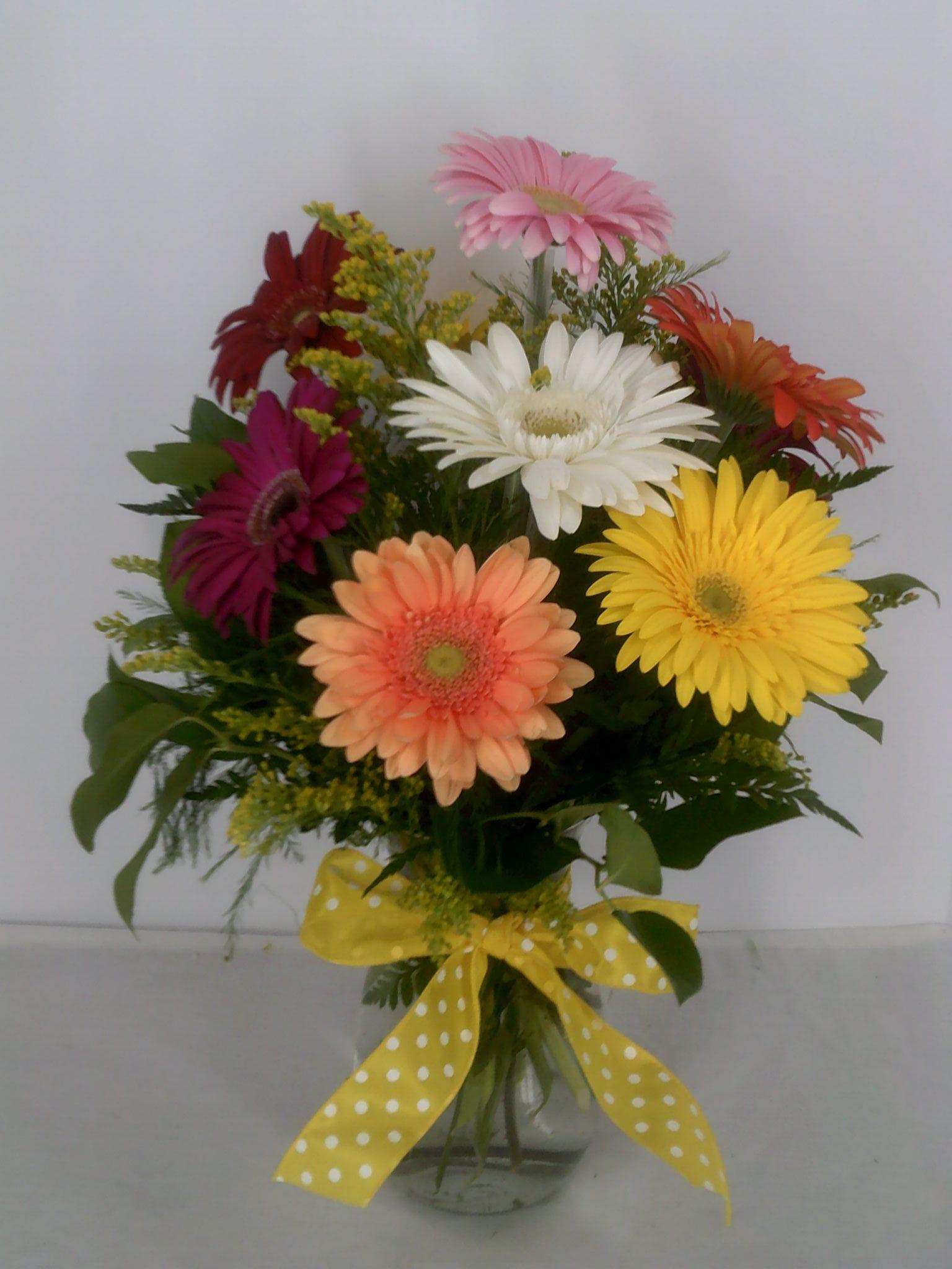 L 70 gerbera love leith flower plant gift shop plaistow nh 03865 izmirmasajfo