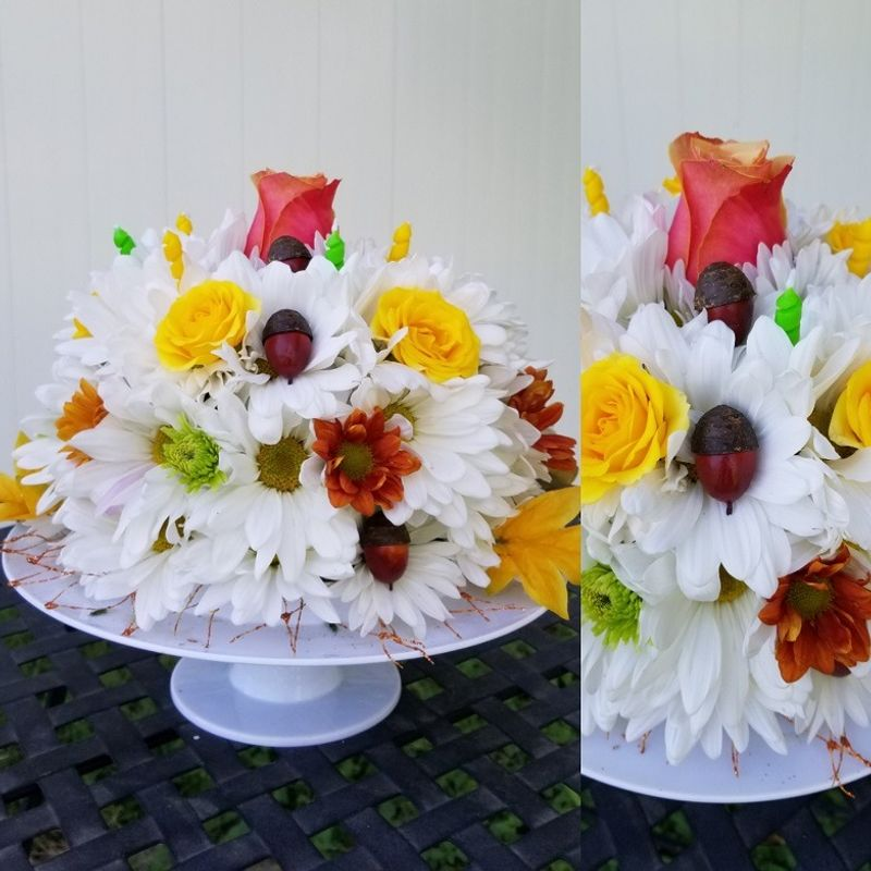 Acorny Birthday Cake Lighthouse Flower Shop