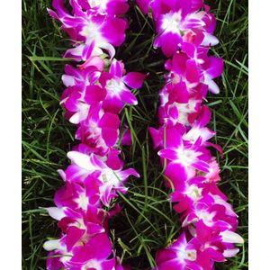 Hermosa Beach Florist Redondo Beach Ca 90277 Florist Magical Blooms