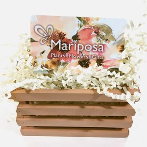 Mariposa Gift Card In Greeley CO Plants Flowers Gifts